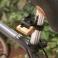 STANDARD oboustranný uzamykatelný stojan na kola